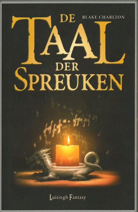 Spellwright (Dutch cover art)