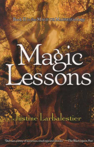 Magic Lessons (Magic or Madness trilogy, #2)