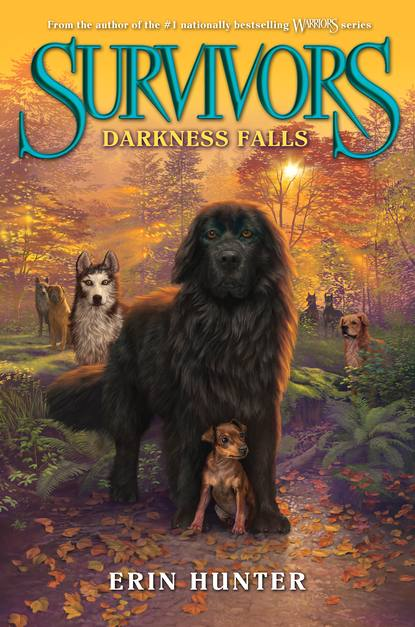 Darkness Falls (Survivors, #3)