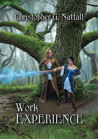 Work Experience (Schooled in Magic, #4)