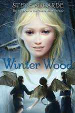 Winter Wood (Touchstone Trilogy #3)