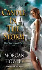Candle in the Storm (The Shadowed Path, #2)