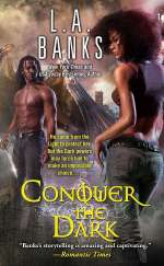 Conquer the Dark (Angel Series, #2)
