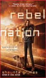 Rebel Nation (Viral Nation, #2)