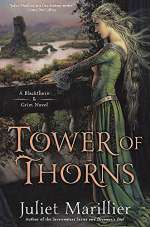 Tower of Thorns (Blackthorn & Grim, #2)