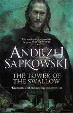 The Tower of the Swallow (The Witcher, #6)