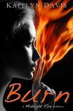 Burn (Midnight Fire, #5)