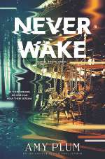 Neverwake (Dreamfall, #2)
