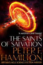 The Saints of Salvation (The Salvation Sequence, #3)