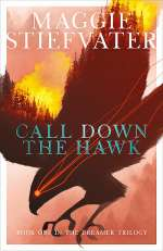 Call Down the Hawk (The Dreamer Trilogy, #1)