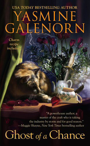 Ghost of a Chance (The Chintz 'n China Mystery Series #1) - Yasmine Galenorn